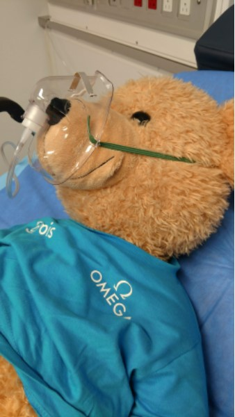 2019 3 tour of the orbis flying eye hospital bear
